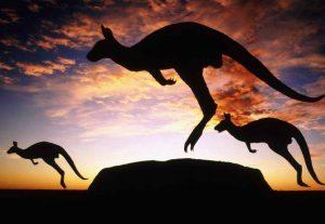 Australien, Friuge i Outbacken - Højskole i Udlandet - HÖJSKOLENDK