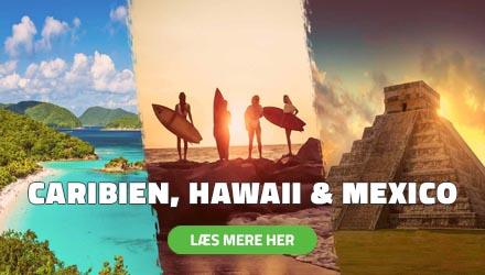 Højskole i Udlandet - Caribien, Hawaii & Mexico - HÖJSKOLENDK
