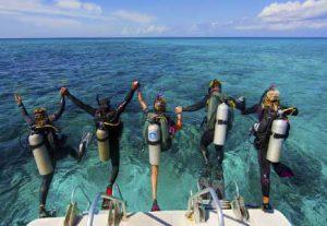 Dyk i det Caribiske Hav - HÖJSKOLENDK, Højskole i Udlandet
