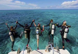Dykning i Mexico - HÖJSKOLENDK, Højskole i Udlandet